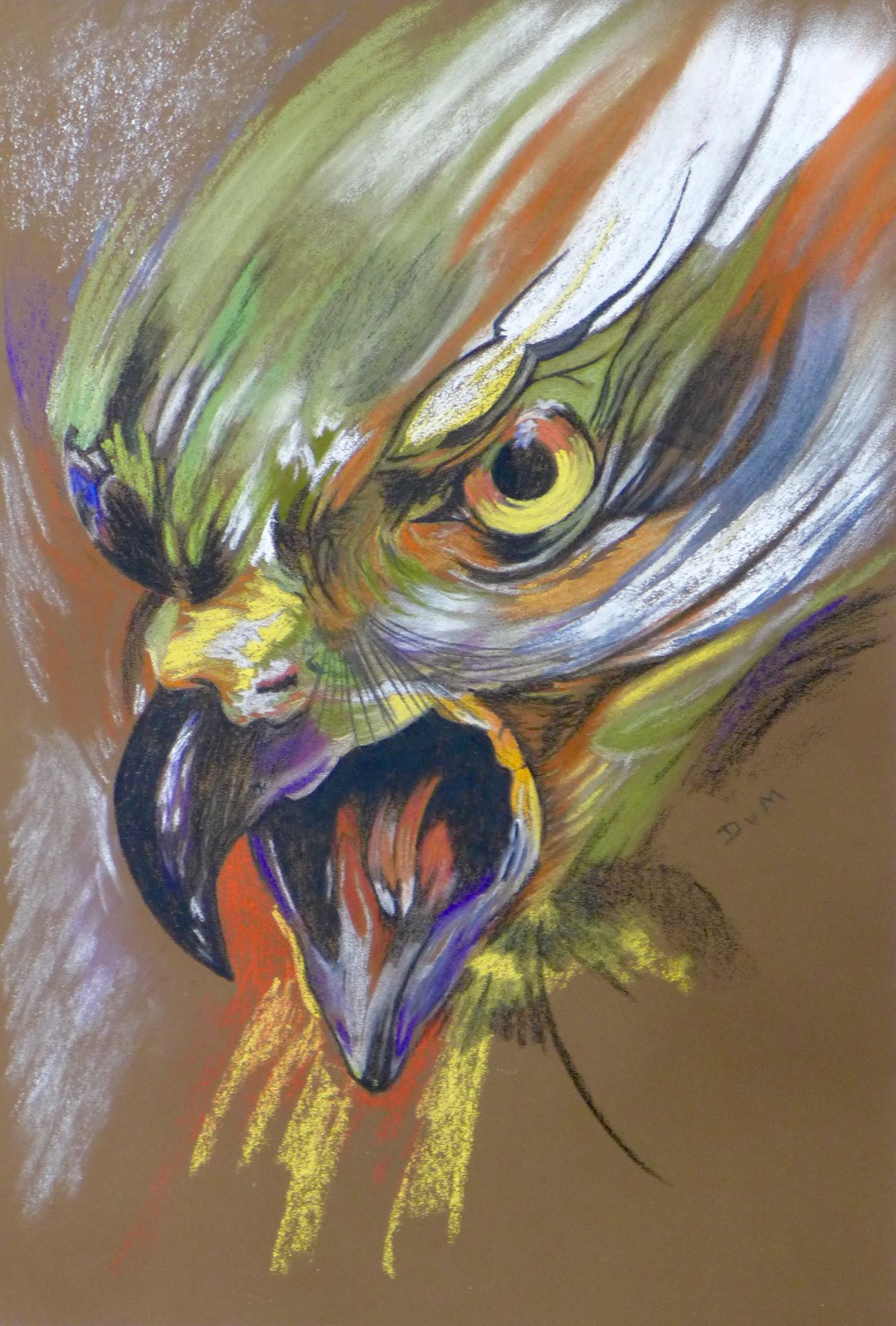 DinyRoofvogel2015