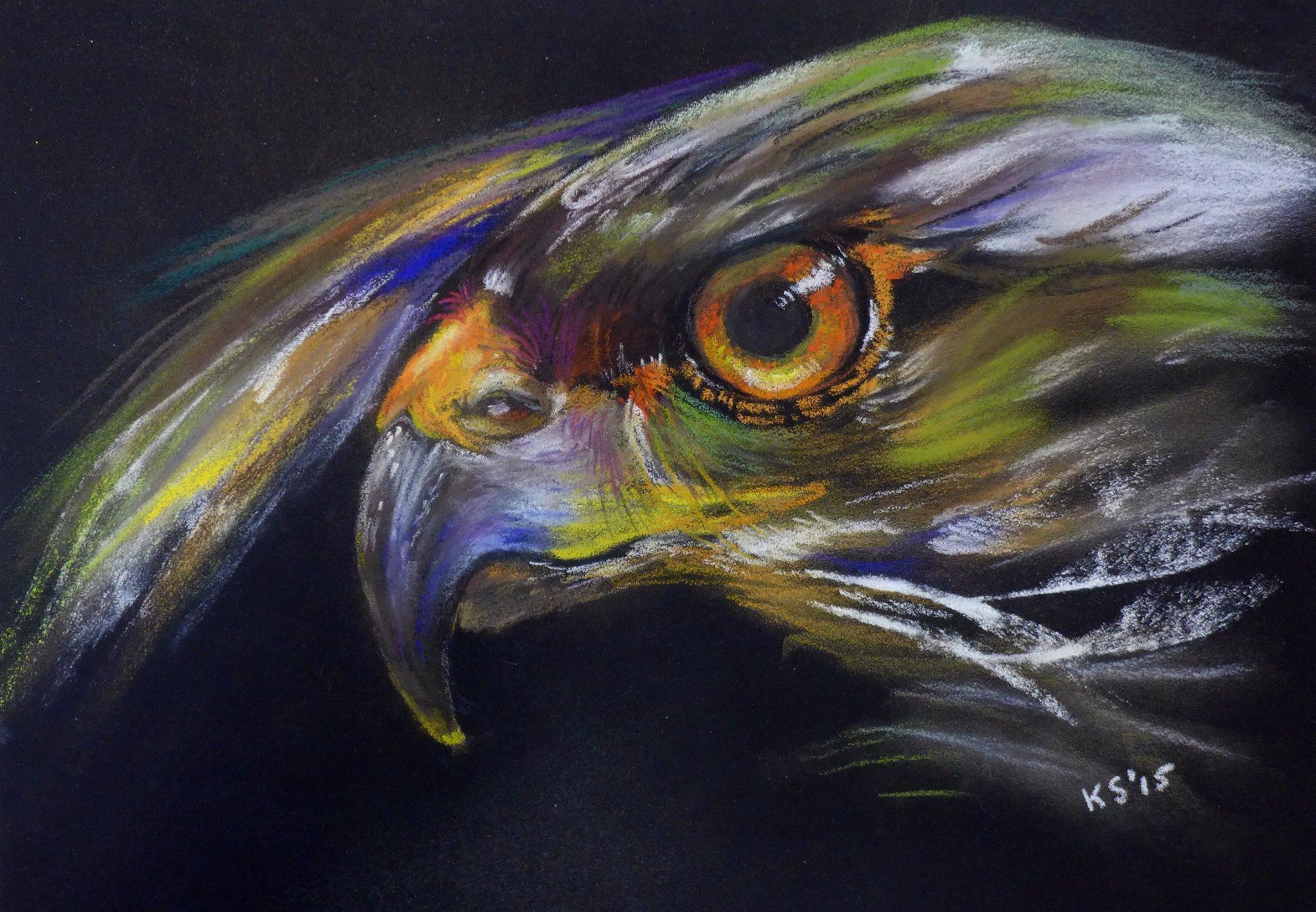 KarinRoofvogel2015